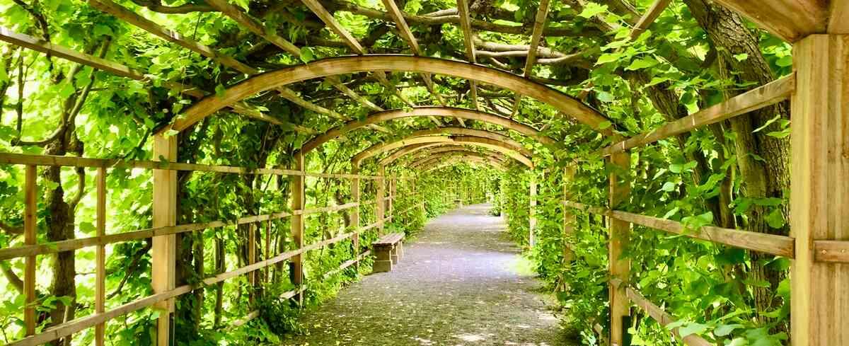 Bogengang im Schlossgarten